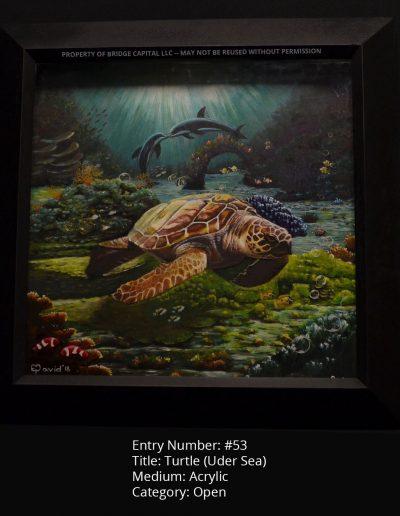Turtle (Under Sea)